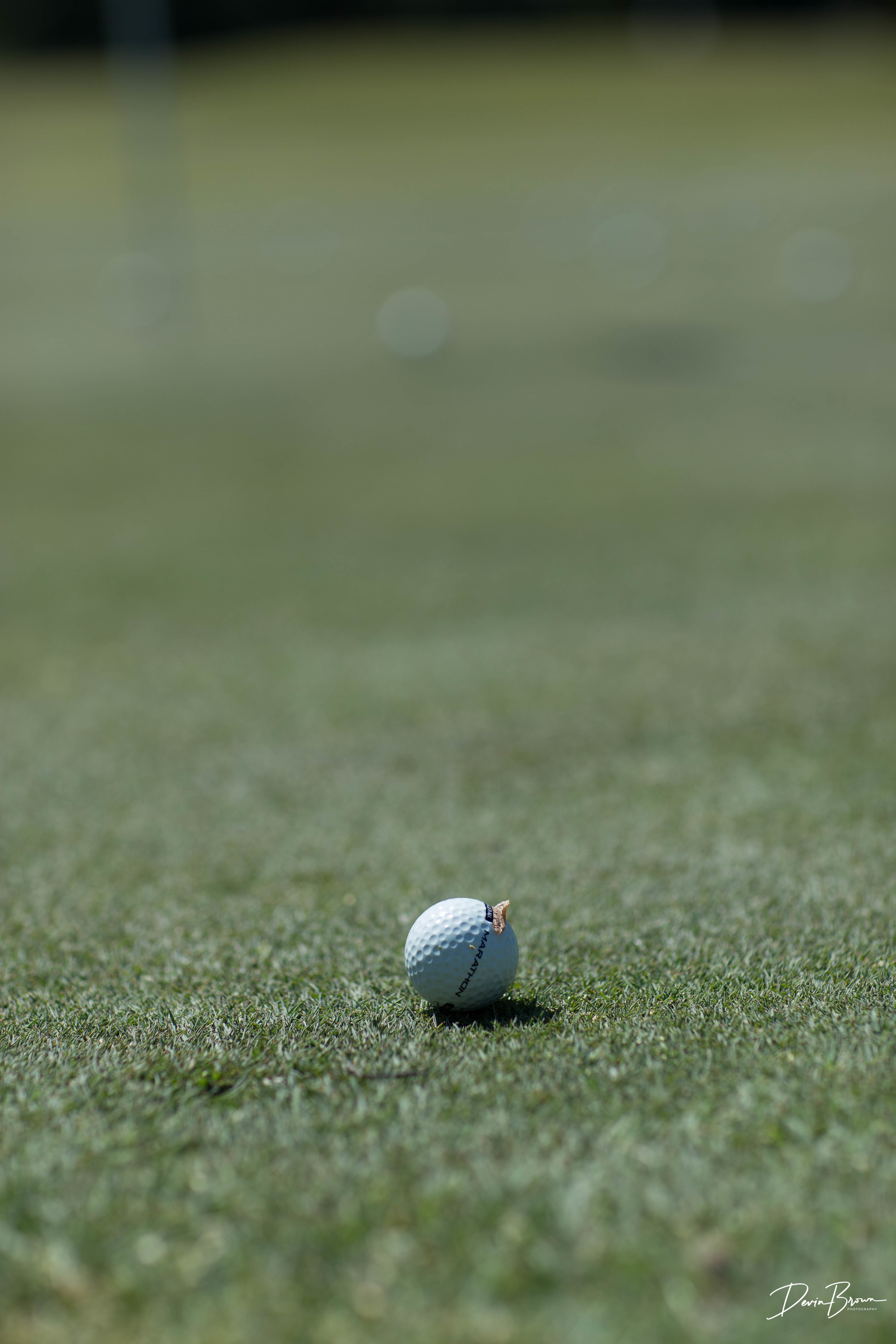 The Arc of Hanover Golf Tournament gallery image #64