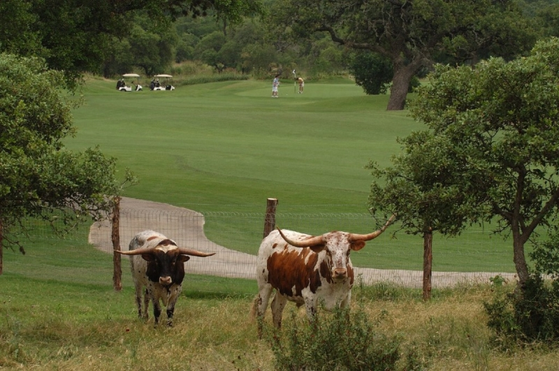 Buffalos FC: Fore the Kids Golf Tournament - 2nd Annual | Presented By:  The Valero Texas Open gallery image #3
