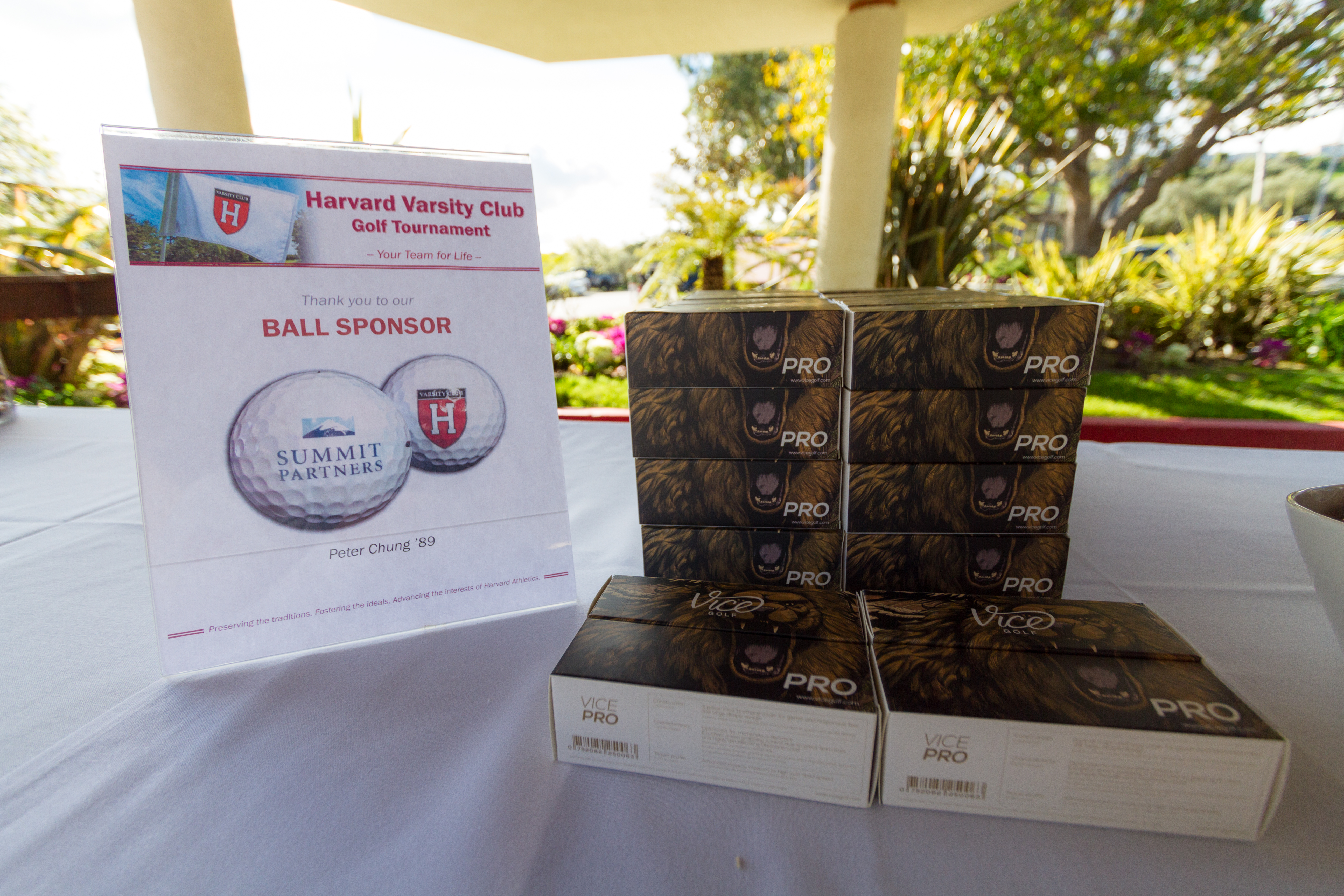 3rd Annual HVC California Golf Tournament gallery image #8
