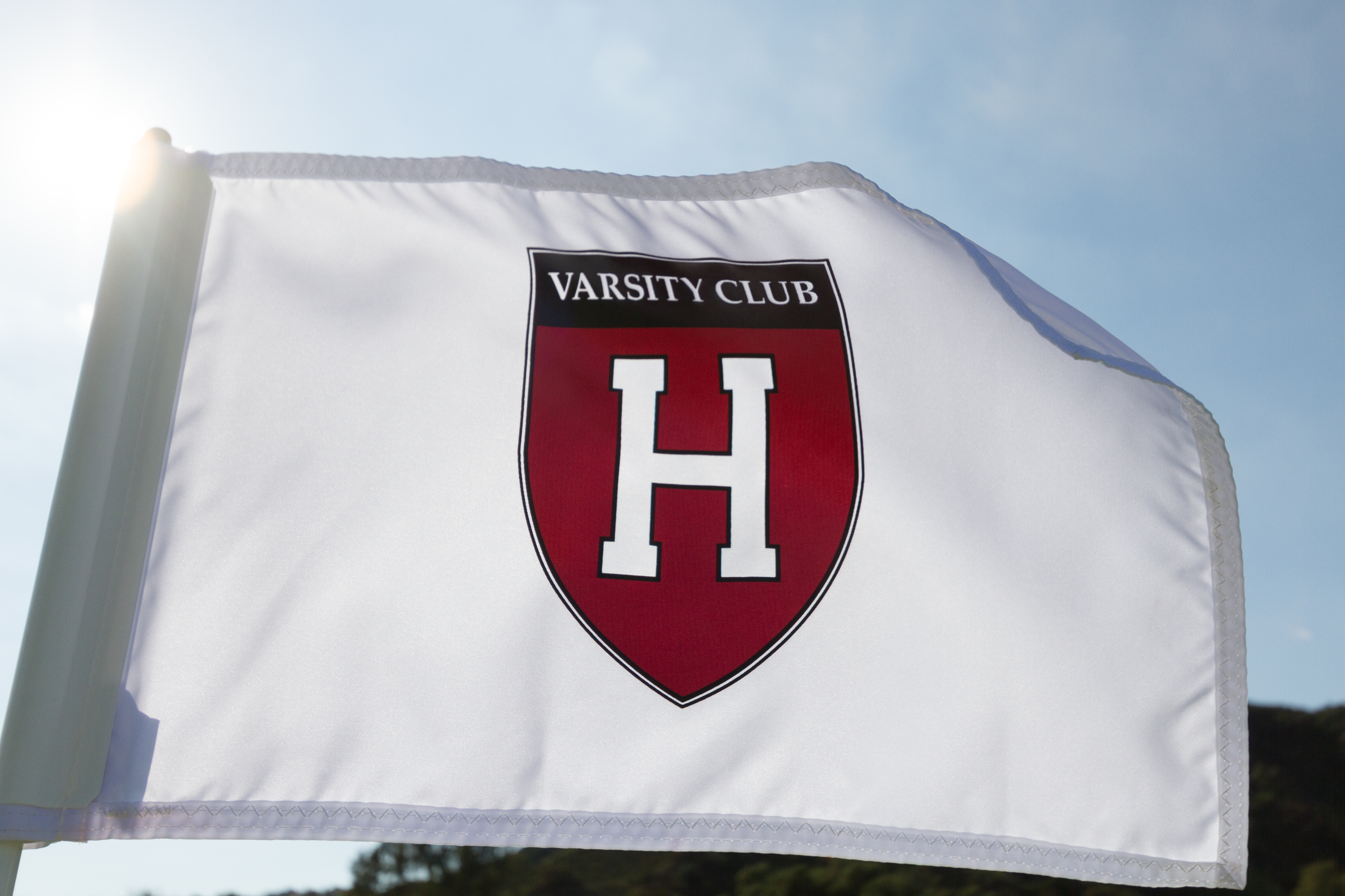 3rd Annual HVC California Golf Tournament gallery image #6