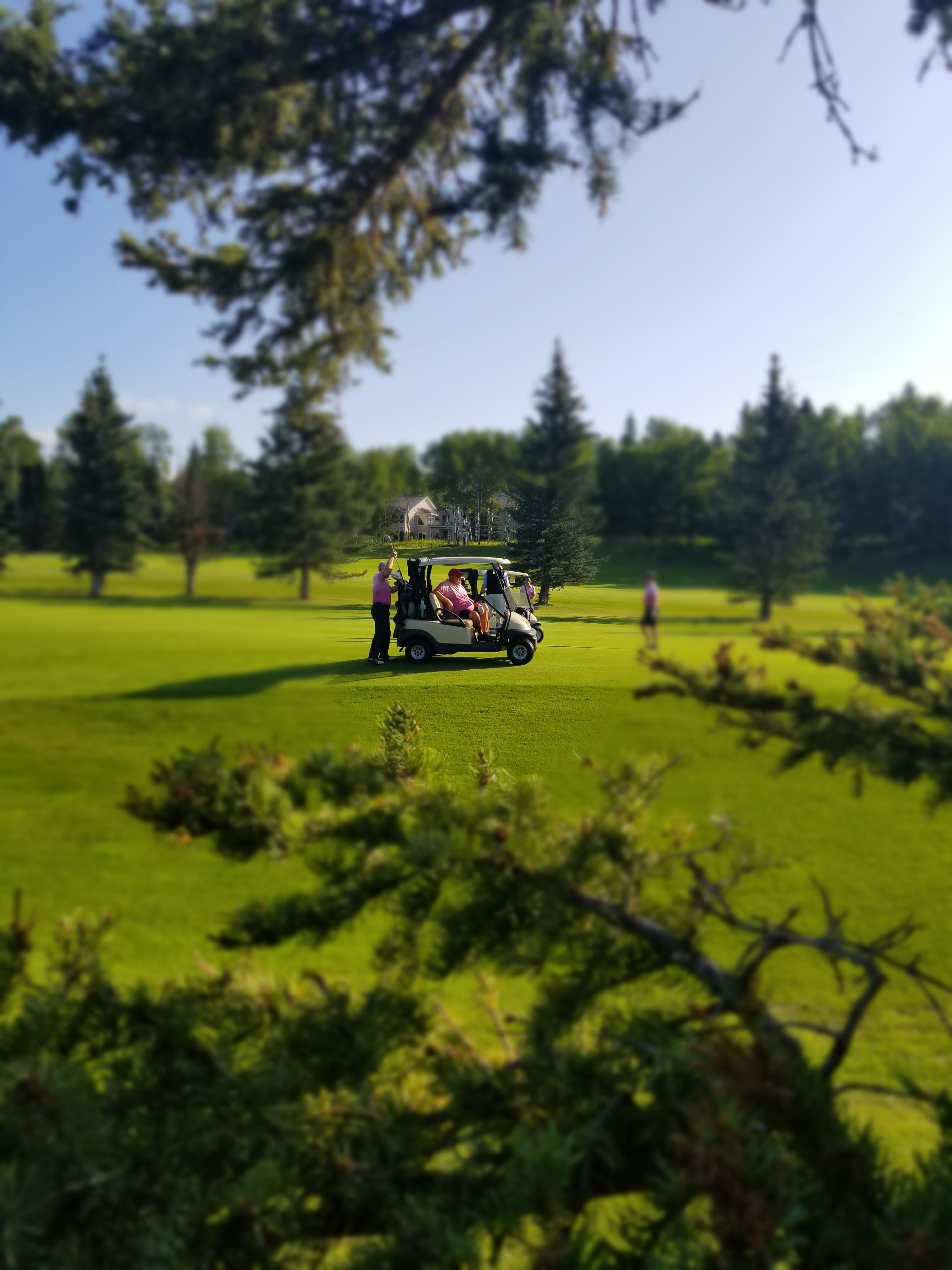 Priddis Greens Charity Classic gallery image #2