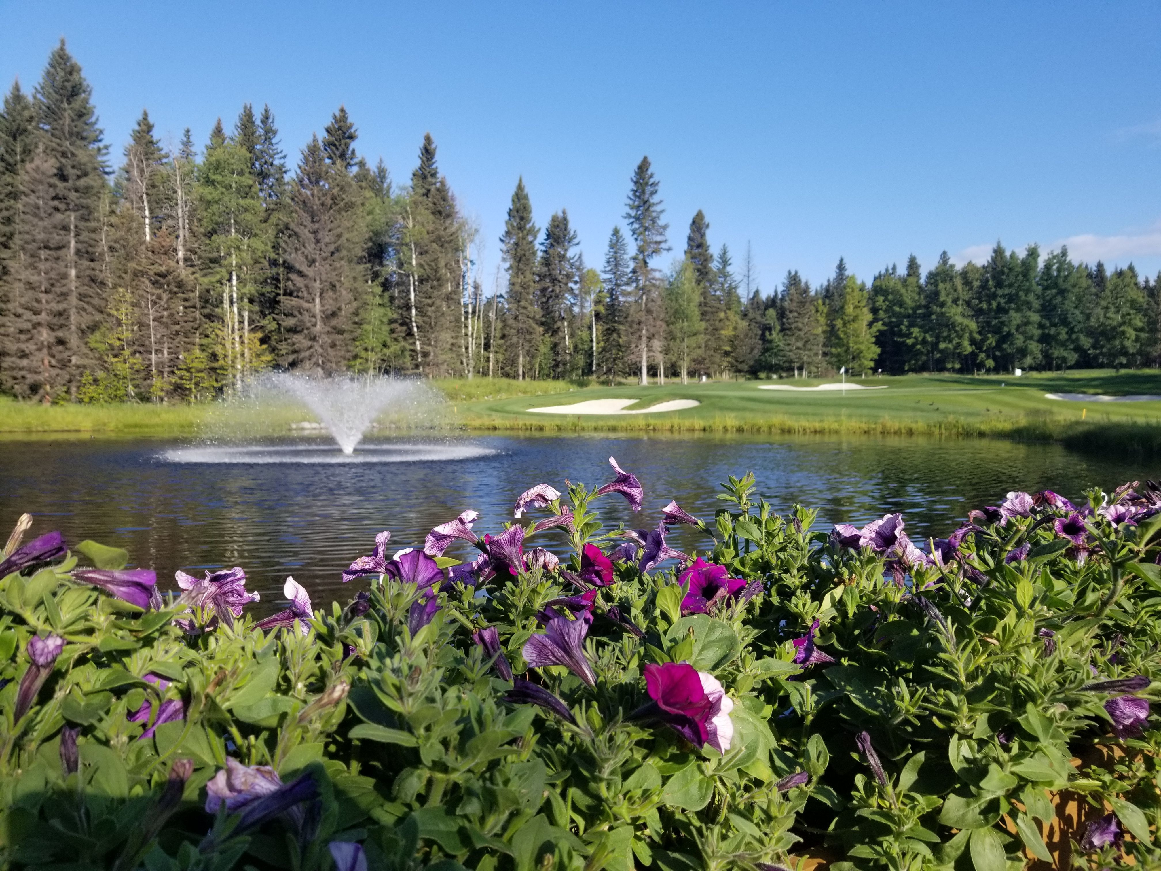 Priddis Greens Charity Classic gallery image #4