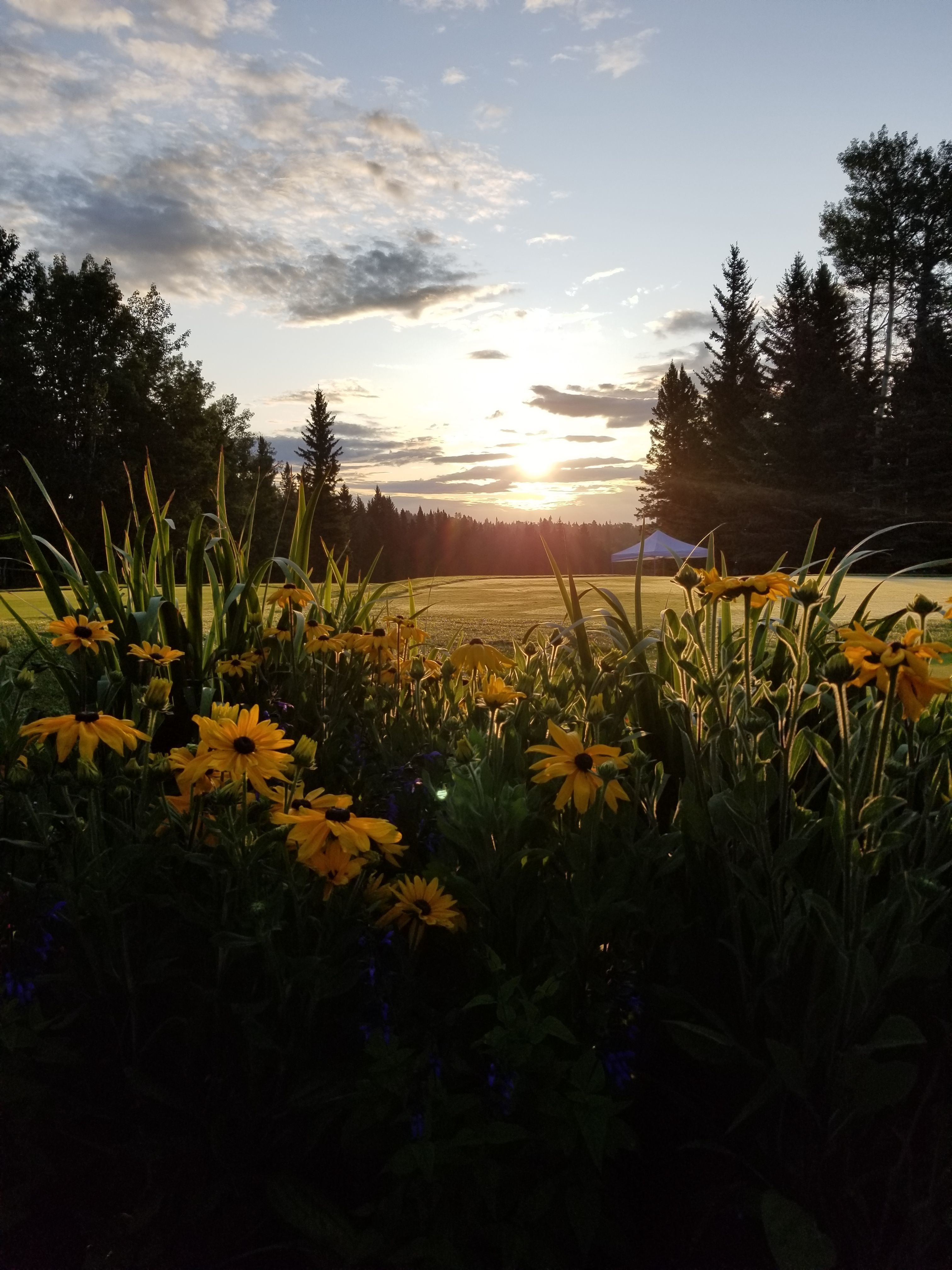 Priddis Greens Charity Classic gallery image #7
