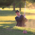 Image of Chipping Contest