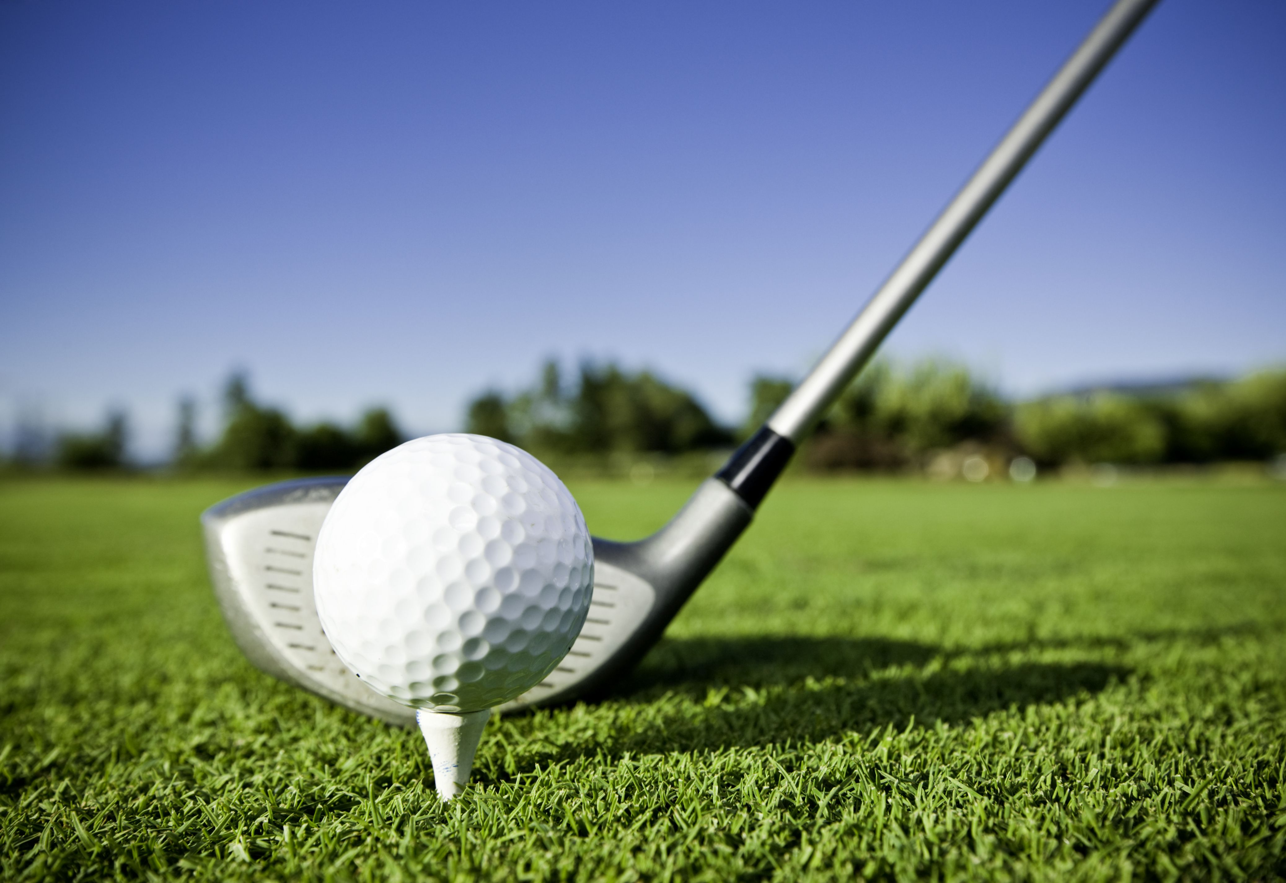 5th Annual Heart for Winter Haven Golf Tournament - Default Image of Games Sponsor (Putting Challenge, Bull's Eye Challenge, Par 3 On/Off)