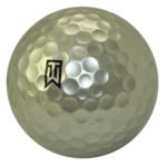 Image of Platinum Sponsor