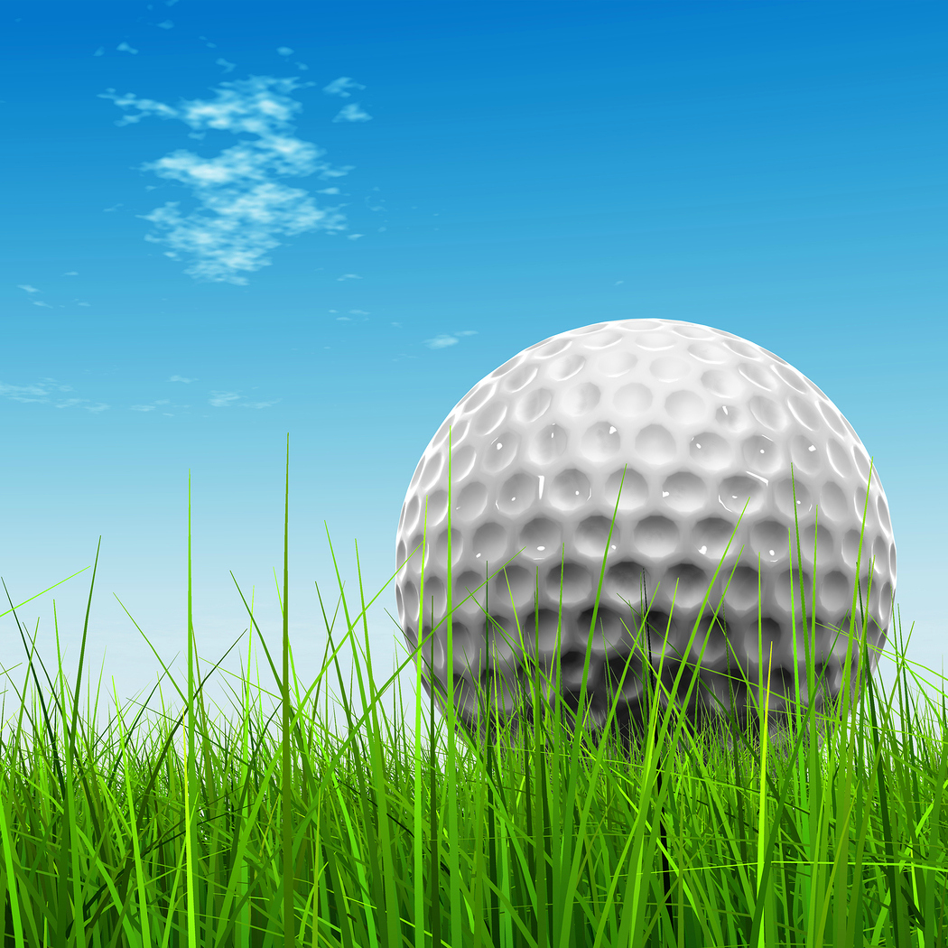 Secure One Capital Wholesale Charity Golf Classic benefiting Caterina's Club - Default Image of The Ytel Million Dollar Shot (5.00 per chance)
