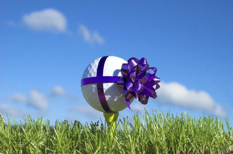 AIA CSI 2020 Golf Tournament - Default Image of Tournament Prize Sponsor