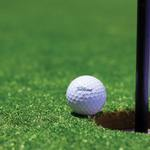 Image of Hole-In-One Sponsor (1 Available)