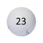 Image of Golf Ball #23