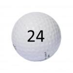 Image of Golf Ball #24