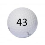 Image of Golf Ball #43