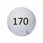 Image of Golf Ball #170
