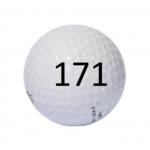 Image of Golf Ball #171