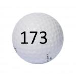 Image of Golf Ball #173