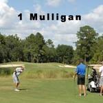 Image of 1 Mulligan