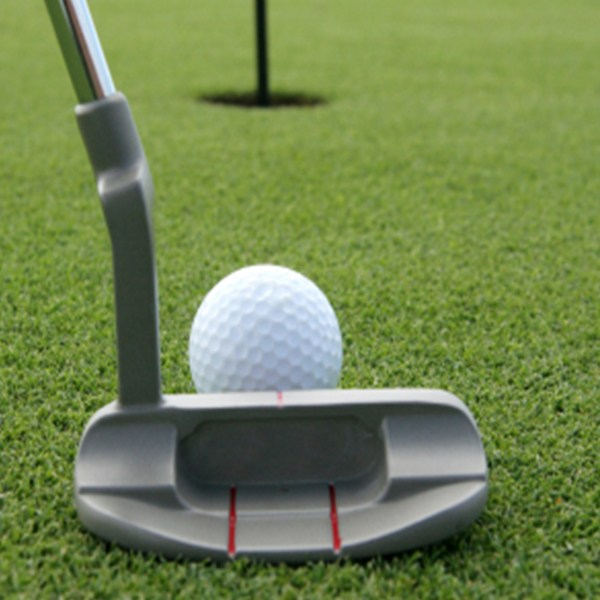 Clackamas Rotary Foundation Golf Tournament - Default Image of Putting Contest