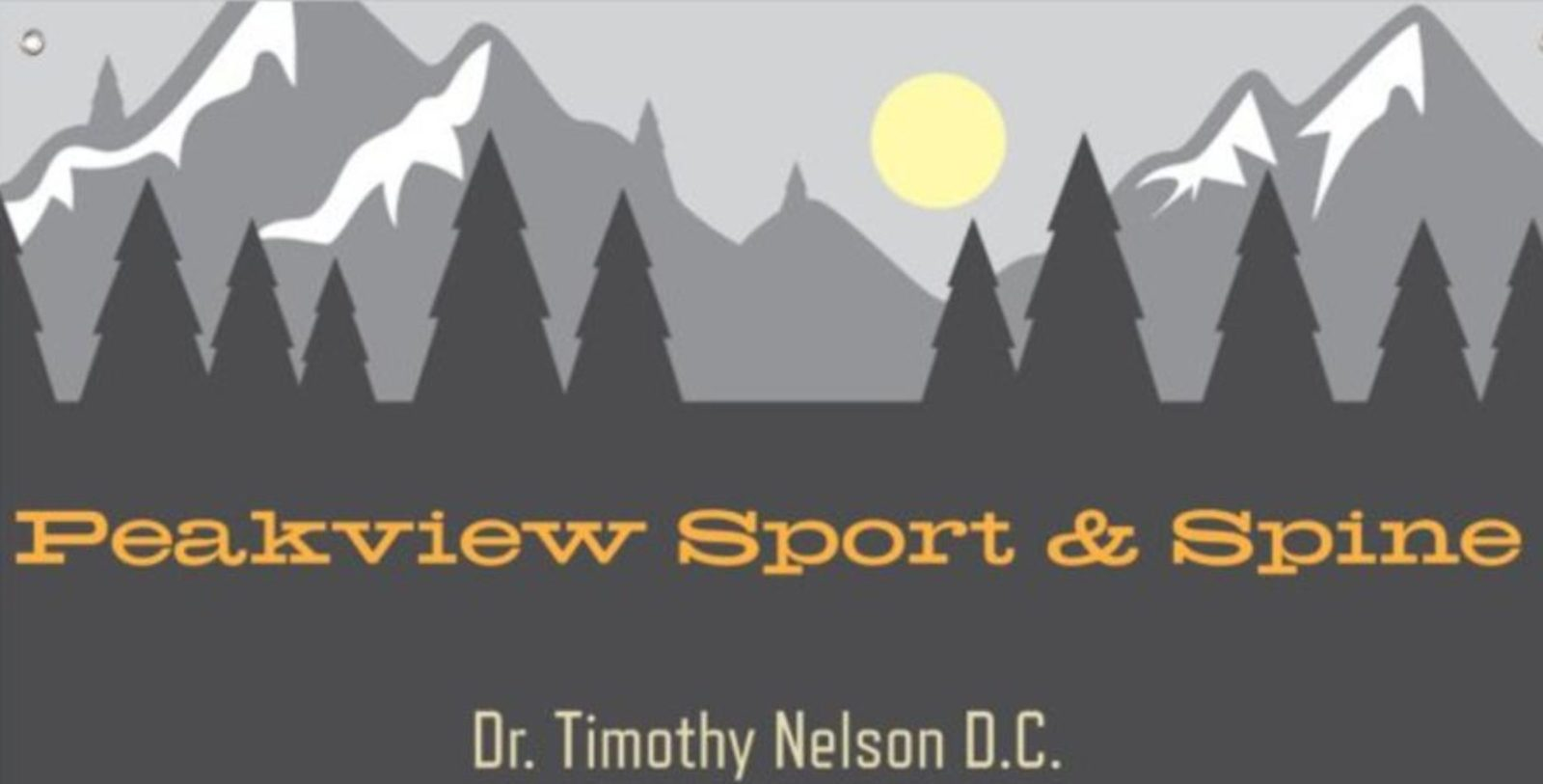Silver - Peak View Sport and Spine - Logo