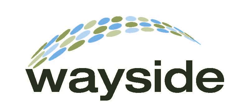 Gold Sponsor - Wayside Co - Logo
