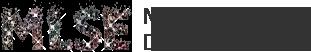 Prize Sponsor - MLSE - Logo