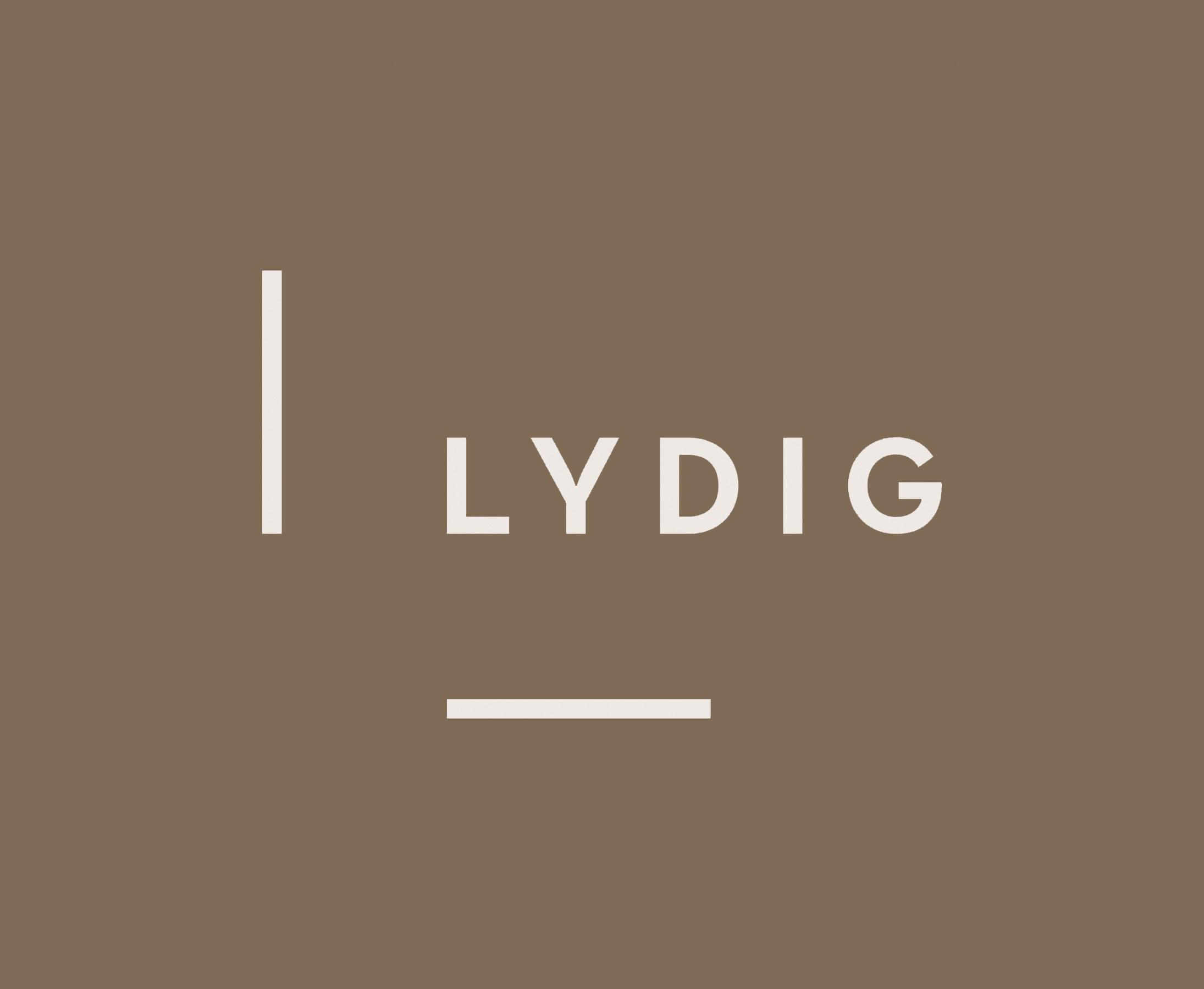 Lydig Construction