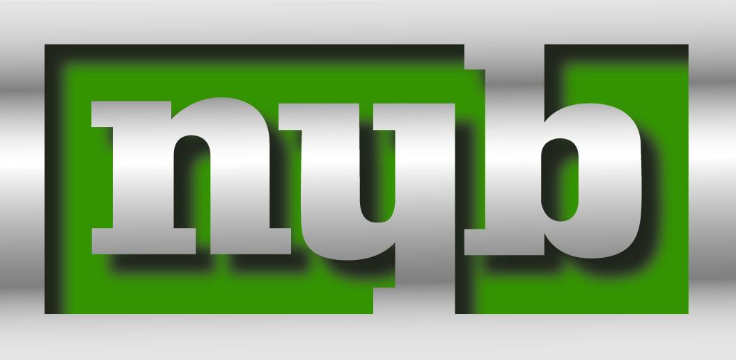Platinum - NYB - Logo