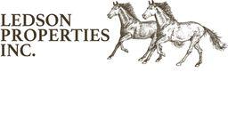 Silver Sponsor - Ledson Properties - Logo