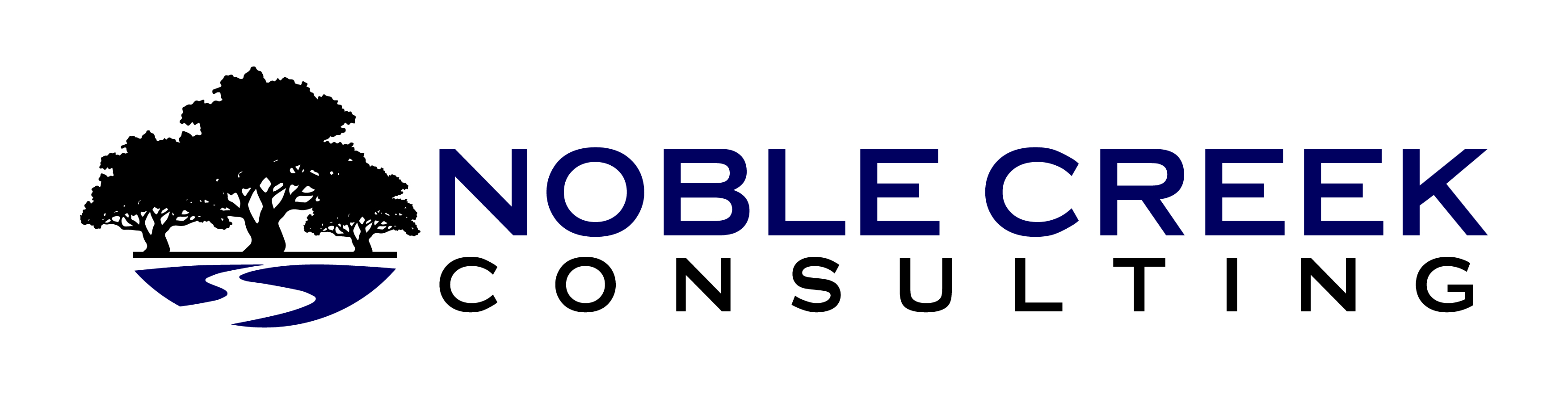 Noble Creek Consulting