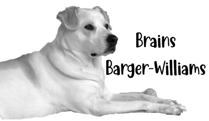 Brains Barger-Williams