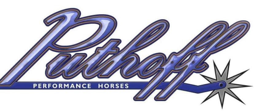 Puthoff Performance Horses