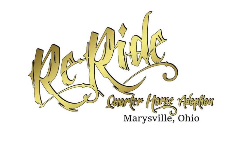Re-Ride Quarter Horse Adoption
