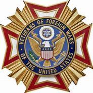 VFW5137 logo